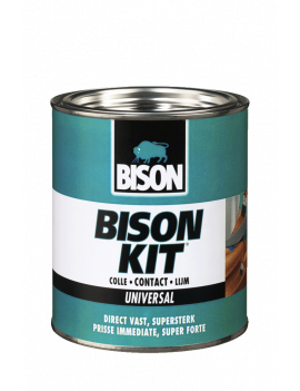 COLLE BISON KIT 250ML