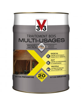 TRAITEMENT V33 MULTI-USAGE...